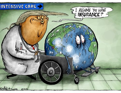 Trump and the World